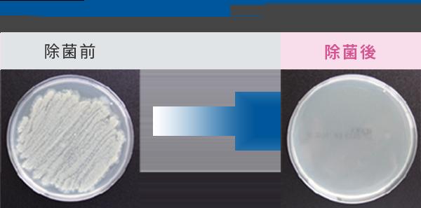 雑菌を除去し強力消臭